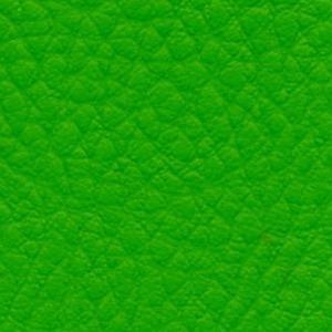 grün IN806