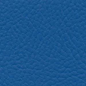blau IN36