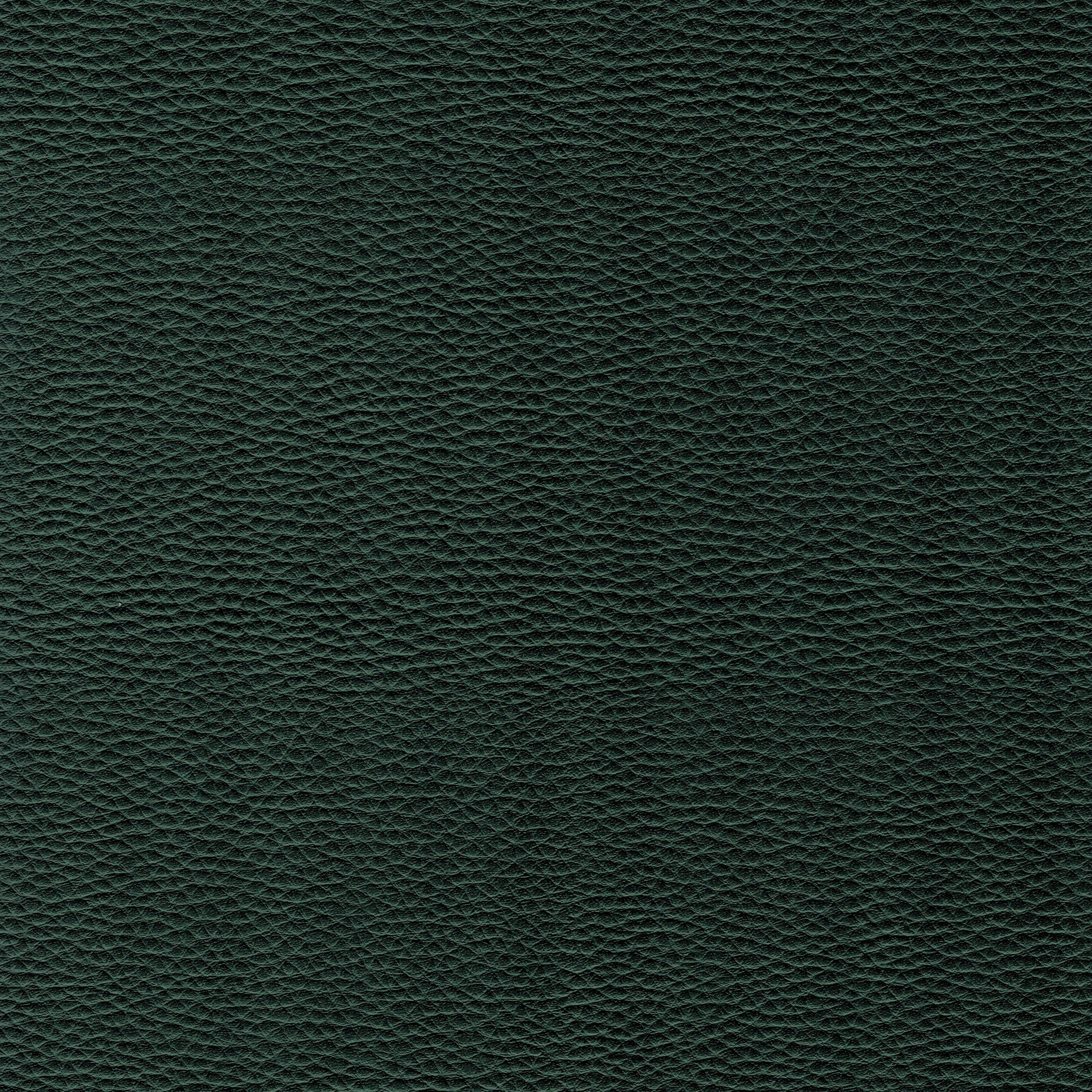 dunkelgrün DOL44