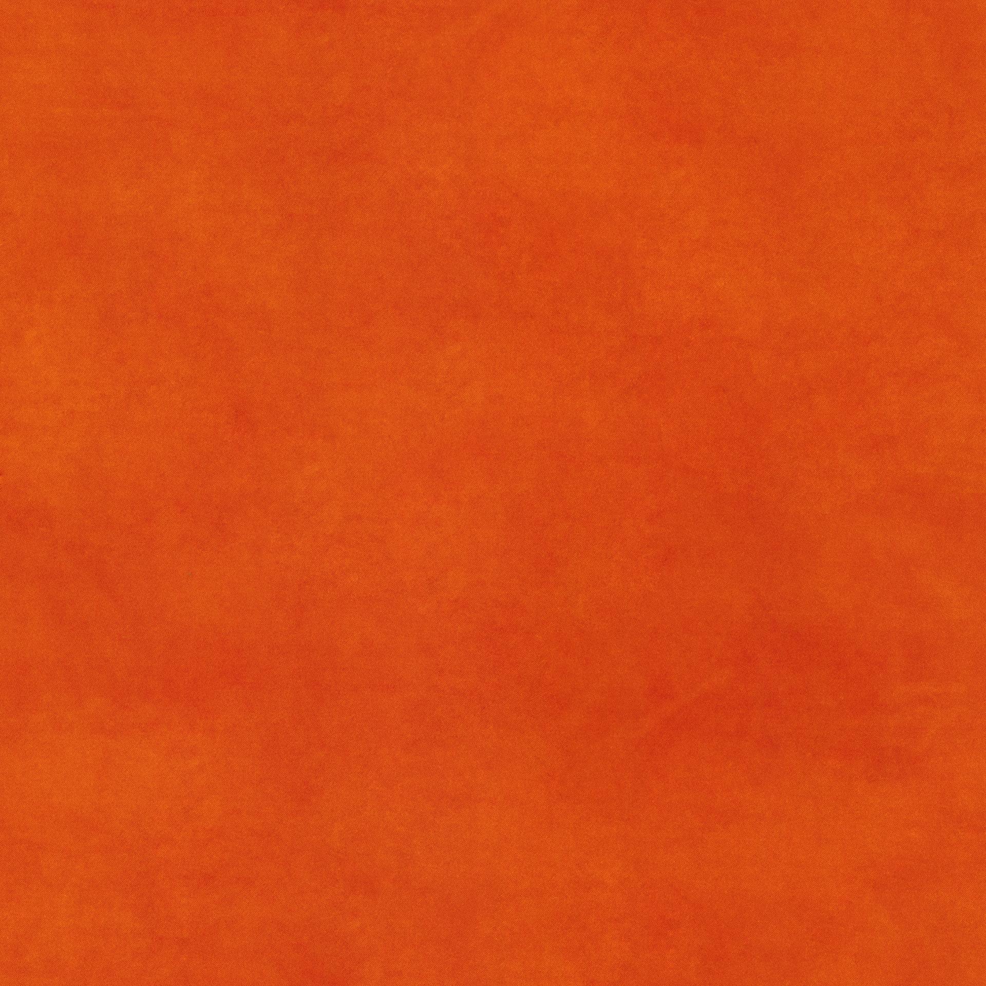 orange BELTE39 (QUICK CLEAN)