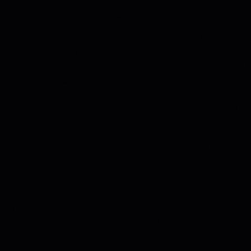 schwarz U999