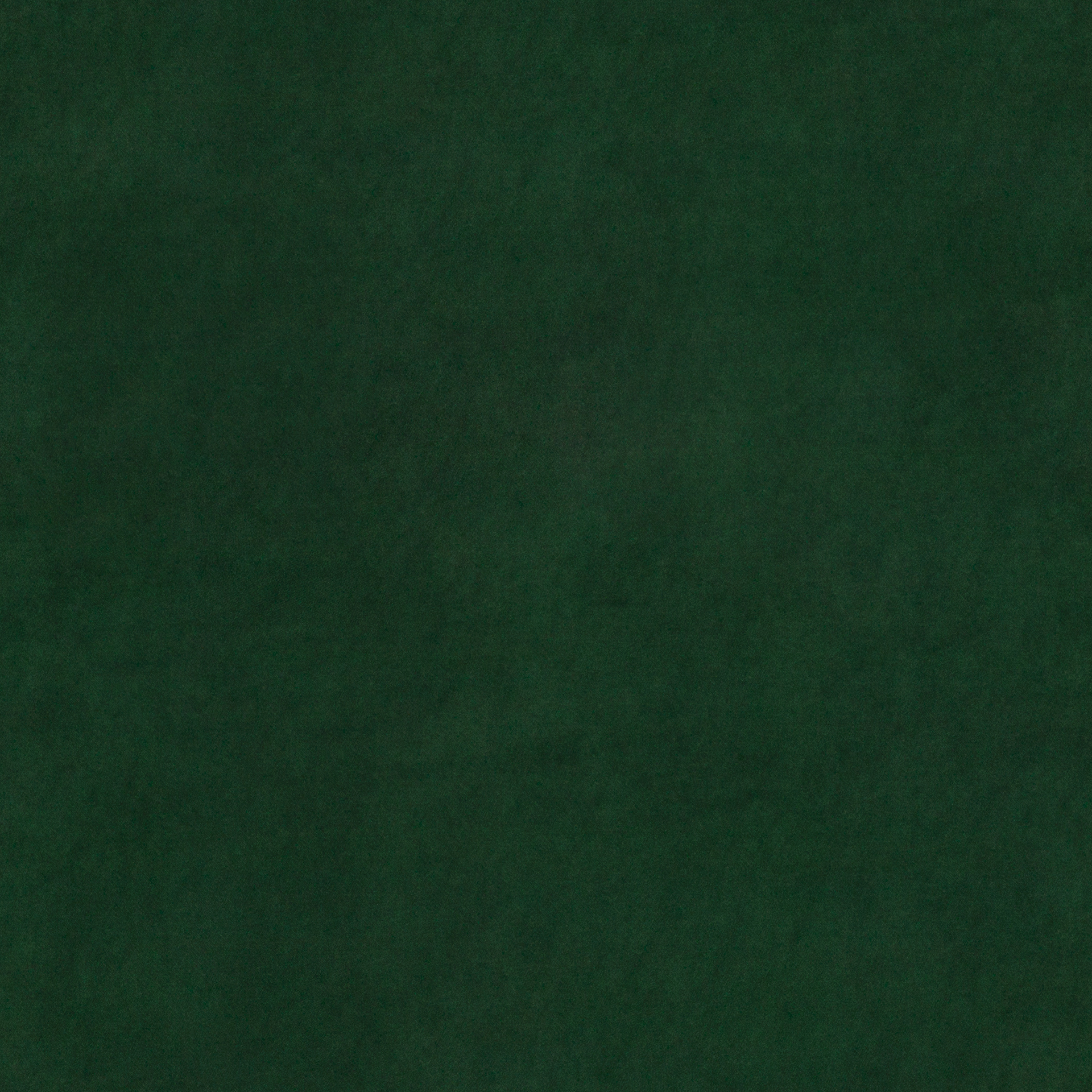 grün BELTE48 (QUICK CLEAN)