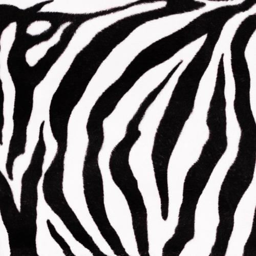 Stoff Zebra