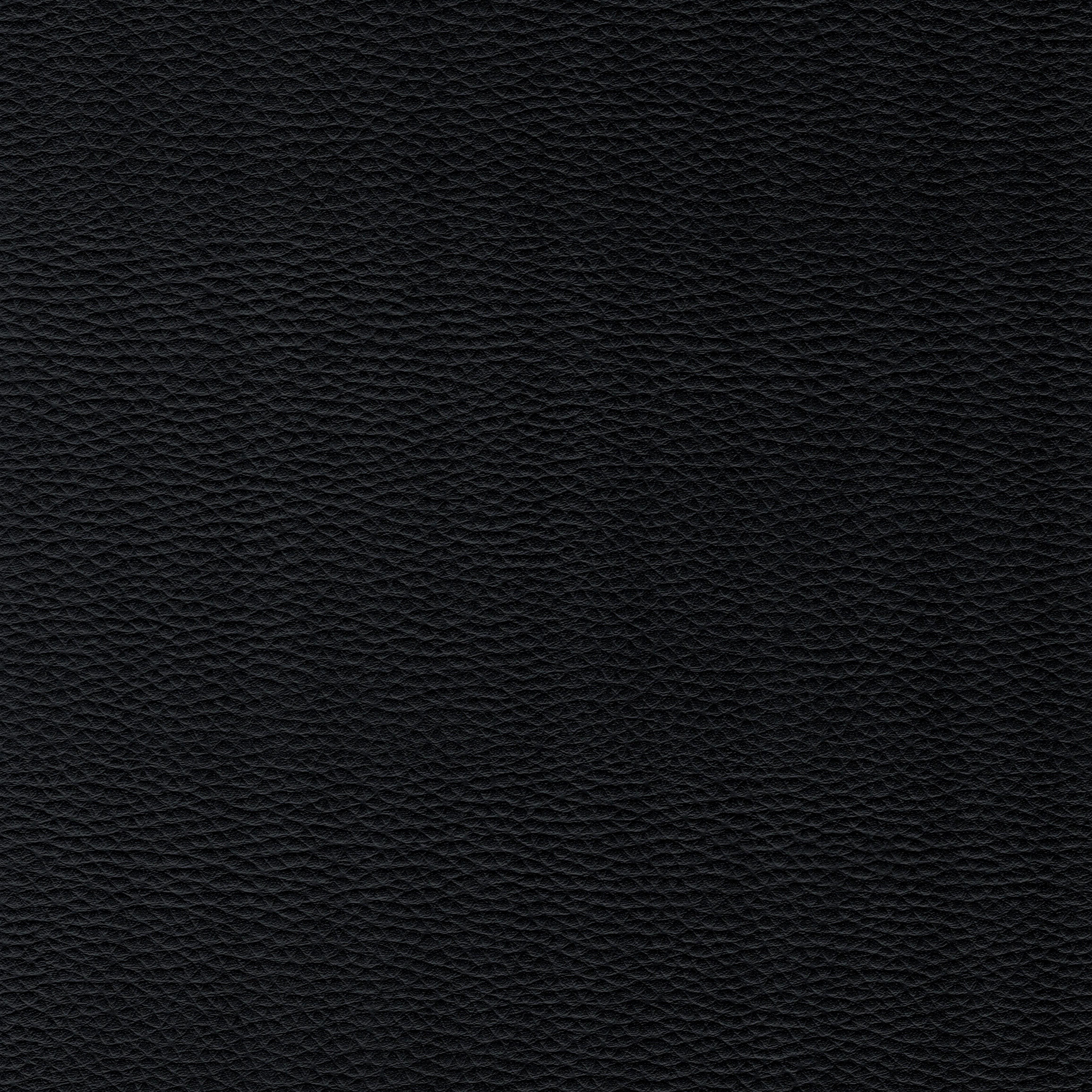 schwarz DOL29