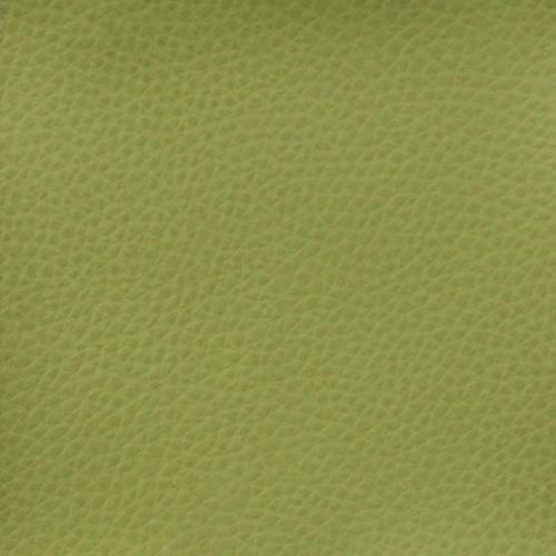 olivgrün hell Z21
