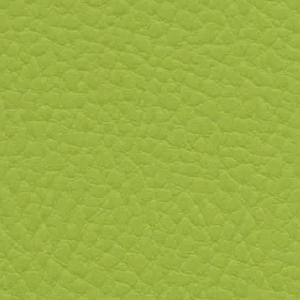 apfelgrün IN27